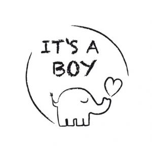 it's a boy – elephant